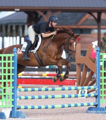 Willie Tynan of Spy Coast Farm with Kirschwasser SCF in the Premier Equestrian 0.80m Low Jumper Division at Tryon International Equestrian Center (Photo: Sharon Packer)