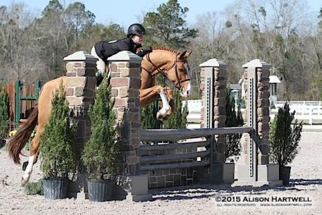 Baker and Look Again are consistent winners in the Main Hunter Ring