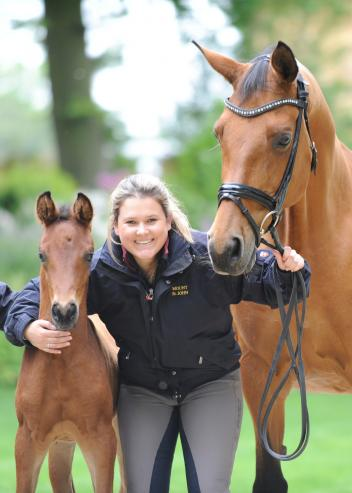 Mount St John's Emma Blundell with Claire (Caprimond x Der Clou) and embryo transfer foal MSJ Flaire meeting for the first time.