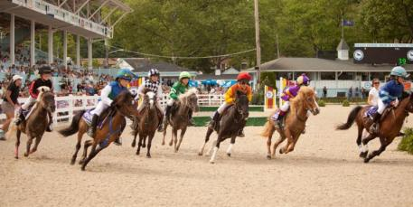 Devon Club will offer a great view of the Shetland Pony races, part of the excitement at the Devon Horse Show and Country Fair-photo by Brenda Carpenter.