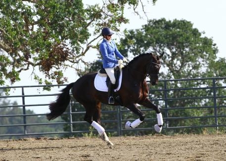 Kelly Casey and Emilion SA schooling (Photo: Lori Rocereto)