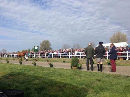 More than 1,500 spectators observed the FEI Horse Inspection at Rolex Kentucky Three-Day Event