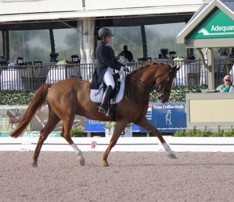 Tanya Strasser-Shostak and Deluxe Tyme, GumBits Happy Horse Harmony Award winners, at the 2015 Adequan Global Dressage Festival