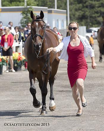 Jessica Phoenix, 31, of Cannington, ON, and Pavarotti will attempt to defend their Pan American Games championship title. (Photo © Cealy Tetley)