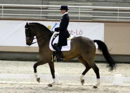 Jean Phillipe Siat and Tarski in the Freestyle with 70.675%