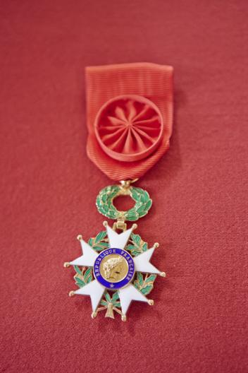 The insignia of the Officer of the National Order of the Legion of Honour, France's highest distinction, which was awarded to HRH Princess Haya today. (FEI/Liz Gregg)