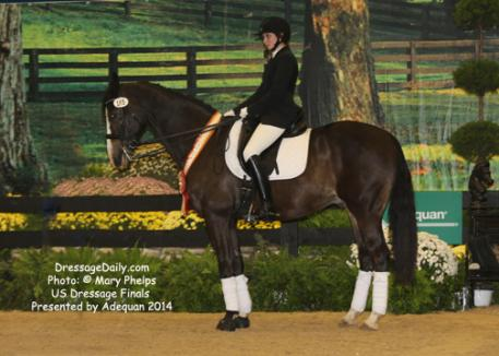 Jacquelyn McMaster and Paviano earned a 68.156 percent on Paviano, her own 17-year-old Dutch Warmblood gelding by Nimmerdor.