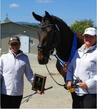 MW Fabulous, 2012 Premium GOV Colt (Furstenball / Espri / Lemon xx) was titled Great American Insurance Group/USDF New England Breeders Series  2014 Colt/Gelding Grand Champion at NEDA's Fall Festival Breed Show, September 2014. He is shown here with owner Jen Vanover and Erin Powers