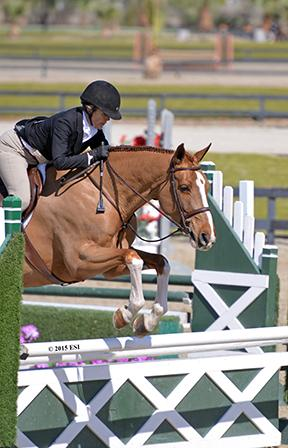 Polly Sweeney and Duet win the Desert Circuit V ,500 Platinum Performance Hunter Prix Sunday, February 22, 2015, at HITS Thermal.(c) ESI Photography