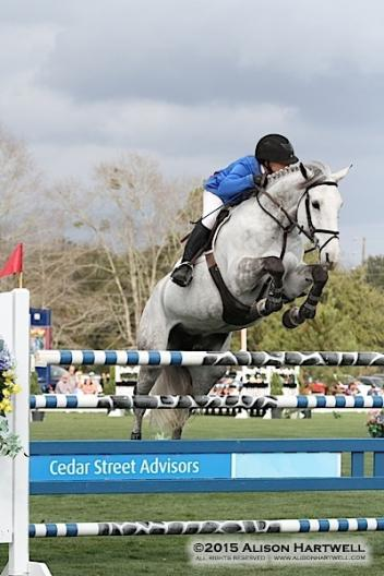 Sandler and Mullentine Imperial clearing the Cedar Street Advisors oxer yesterday on their way to the win.