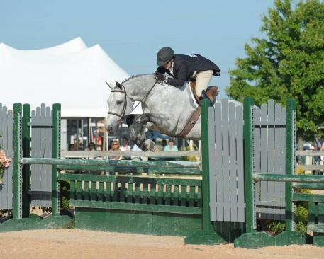 Competition rings will be set with jumps to allow riders to school in preparation for Devon while staying at Swan Lake.