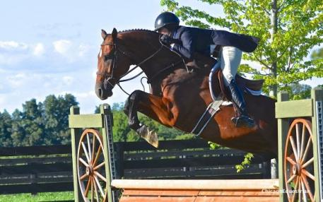 Tammy Provost and Asscher took second place in the USHJA National Hunter Derby. Photo by Chicago Equestrian.