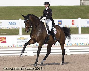 Belinda Trussell of Stouffville, ON, and Anton anchored the Canadian Dressage Team, which is currently sitting second following the opening day of team competition (Photo ©: Cealy Tetley - www.tetleyphoto.com)