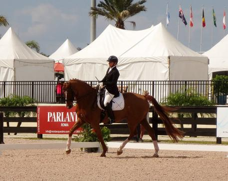 Unique and Heidi Degele at the 2014 Gold Coast Dressage Finale II received a 70.65 percent in Prix St. George