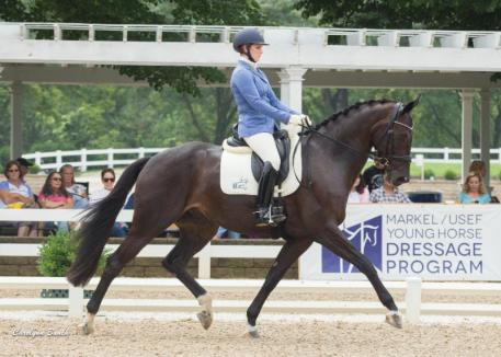Emilion SA is leading the 5-year-old division (Carolynn Bunch Photography)