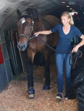 Laura Graves disembarks the plane with her horse 'Verdades'. (c) Ken Braddick/ Dressage-News.com