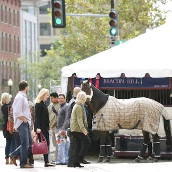 For one week in October 550 of the best horses in the world move in and make the streets of Washington D.C. their home. Photo copyright Alden Corrigan Photography.
