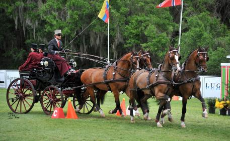 Chester Weber is unbeatable as FEI Four-in-Hand Horse champion at 2015 Live Oak International, and won the Jean Keathley Memorial Award for being the FEI driver with the lowest dressage score (Photo:PicsofYou.com)