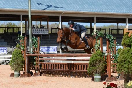 The top five horses and riders from the Green Working Hunters, the Low Hunters, the Working Hunters, the Children's Hunters and the Adult Hunters will all be eligible to compete in the second round of the ,000 Virginia Horse Center Hunter Classic.