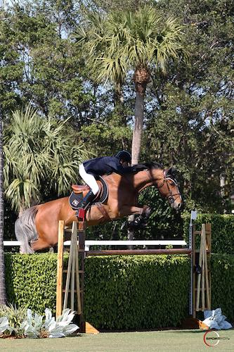 Adam Prudent and Vasco Win at The Ridge at Wellington Turf Tour at the International Polo Club Palm Beach