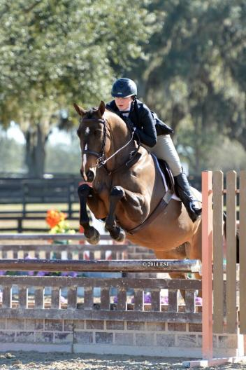 Alex Trolli and Del Piero captured the Low Junior Hunter division championship during the HITS IX Ocala Winter Celebration. Photo By: ESI Photography.