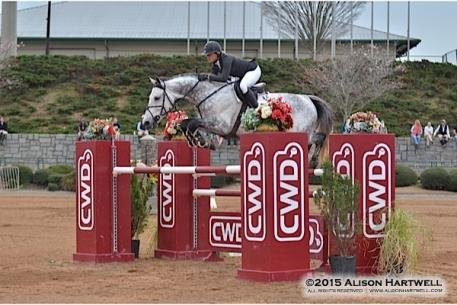Amanda Flint pilots Balotan over the CWD oxer in Saturday's $25,000 CWD Grand Prix in the Olympic Arena at the Georgia International Horse Park.