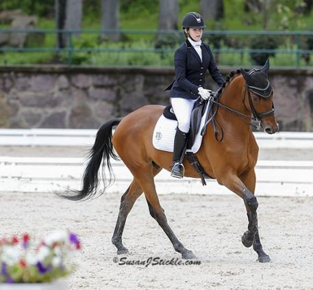 Ozzy Cooper, competing at Gladstone, steps up as Peavy's WEG mount. Photo: Susan Stickle