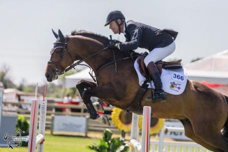 Ten-time Canadian Olympian Ian Millar pictured riding Ericson, opened the Ottawa National Horse Show by claiming the top two spots in the 1.35m Open Jumpers. (Photo: Ben Radvanyi Photography)