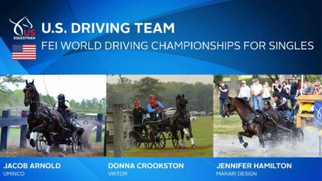 2018 FEI World Driving Championships for Singles