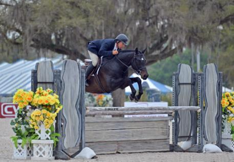 Aaron Vale and Dress Balou on their way to a $25,000 Devoucoux Hunter Prix win.