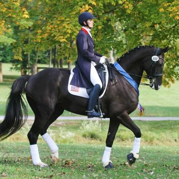 Angela credits the Markel Young Horse Program with helping develop horses such as Allure S. Photo: Kristen Posner