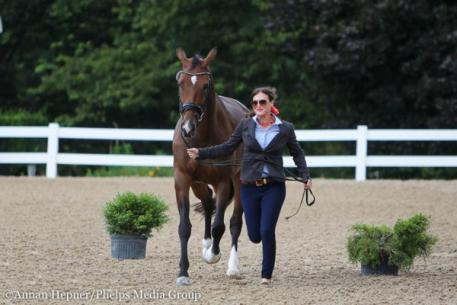 Amy Speck-Kern, Gerona, Markel/USEF Young and Developing Horse Dressage National Championships, Lamplight Equestrian Center