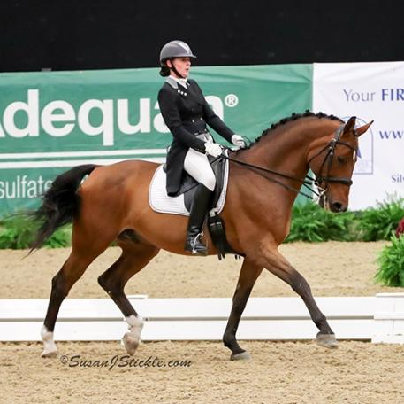 Amy Leach and Radcliffe earned the first championship awarded at the 2016 US Dressage Finals presented by Adequan® for the Intermediate II Adult Amateur division.