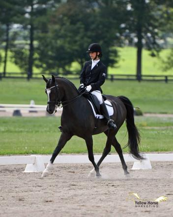 Ana DiGironimo's faith in her mount paid off with a victory in the first round of the Musical Freestyle Open division on the first day of the National Dressage Pony Cup Championship Show.