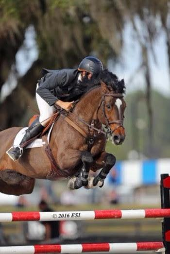 Andrew Kocher and USA Today on their way to a $25,000 HITS Grand Prix win.