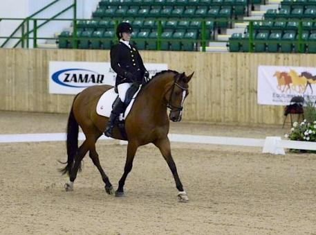 Rebecca Hart and Schroeter's Romani win at the CPEDI3* Grade II Team at Hartpury Dressage Festival. Photo: Kevin Sparrow.