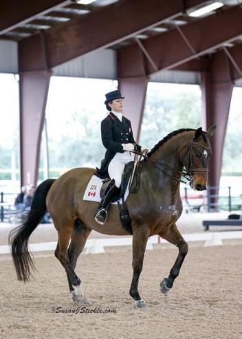 Belinda Trussell and Anton top the AGDF3 FEI Grand Prix presented by Yeguada de Ymas.