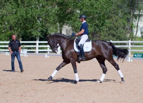 Benjamin Pfabe of Dallas, TX, in a clinic session with Scott Hassler at The Colorado Horse Park during DSIR.