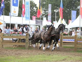 Boyd Excell, FEI World Driving Championships for Four-in-Hand