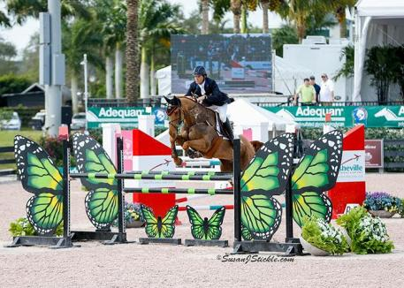 Boyd Martin and Blackfoot Mystery in the show jumping portion of competition.