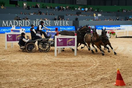 Australia's Boyd Exell claimed his second win in a row with victory at the inaugural edition of FEI World Cup™ Driving in Madrid (ESP) tonight.
