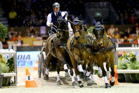 Boyd Exell (AUS)  Photo Pierre Costabadie/FEI