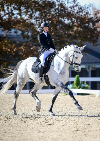Casey Blum of Nebraska and Eschaton trotted to a unanimous win in the Second Level Adult Amateur Championship.