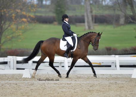 Catalina Sherwood & Razmitaz rebounded from a week of worry to win the First Level Adult Amateur Championship.