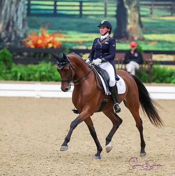 Caymus, sired by Iron Spring Farm's Sir Sinclair, Keur, claimed the USDF Intermediaire I Horse of the Year ridden by Jody Kelly.