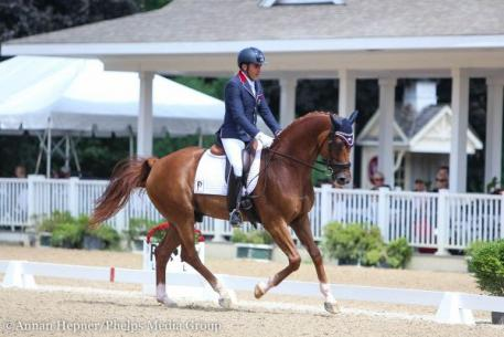 Cesar Parra, Don Cesar, The Markel/USEF Young and Developing Horse National Championships