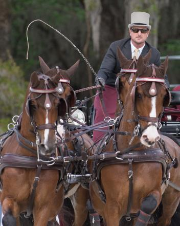 Chester Weber and his team on their way to victory during the 2018 Live Oak International. (Photo courtesy of Scott Hodlmair)