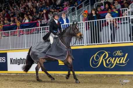 Darcy Hayes of Aurora, ON, rode Say When to a second consecutive victory in the 5,000 Braeburn Farms Hunter Derby for owner Danielle Trudell-Baran on Sunday, November 5, at the Royal Horse Show in Toronto, ON.