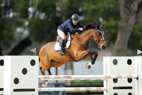 Debbie McCarthy Connor and Zim on their way to a $2,500 Johnson Horse Transportation Open Welcome win.