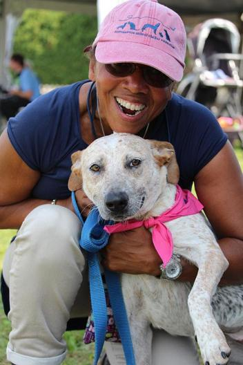 Dogs, Cats and Horses were on hand at the Hampton Classic, all looking to find their forever homes. © Kiley Bates